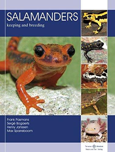 Salamanders - Keeping and Breeding (includes ALL Newts, Rubber Eels).:  Frank Pasmans, Serge Bogaerts, Henry Janssen, Max Sparreboom:  9783866592650: Amazon.com: Books