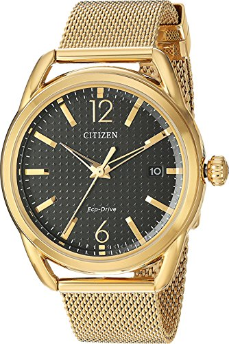 Ladies' Drive from Citizen Eco-Drive LTR Black Dial and Gold-Tone Stainless Steel Watch FE6082-59E