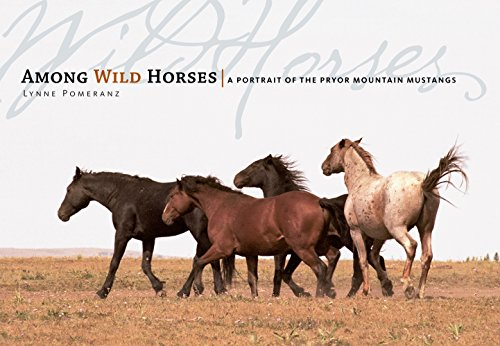 Among Wild Horses: A Portrait of the Pryor Mountain Mustangs ()