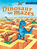 img - for Maze Craze: Dinosaur Mazes book / textbook / text book