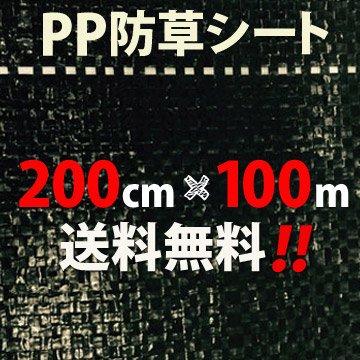 PP 防草シート 2m×100m (1本) B01CZJ9K40