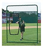 Softball Protector Screen Replacement Net