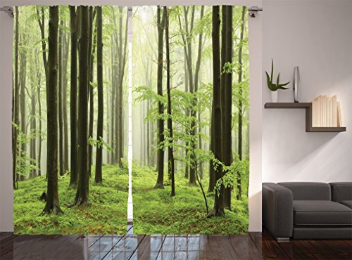 Ambesonne Farm House Decor Collection, Spring Beech Forest Morning Haze in the Mountains of the Southern Polish Picture, Living Room Bedroom Curtain 2 Panels Set, 108 X 84 Inches, White Green Olive