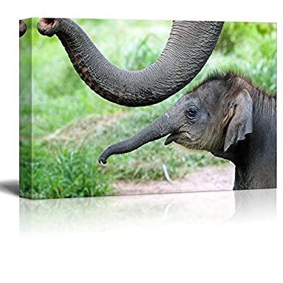 Wild Animals Series Elephants Stretched and - Canvas Art