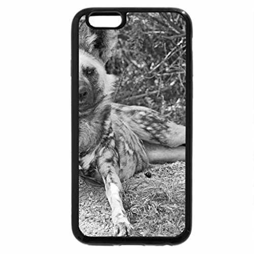 iPhone 6S Plus Case, iPhone 6 Plus Case (Black & White) - Wild dogs