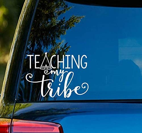 Teacher Teaching My Tribe SD307