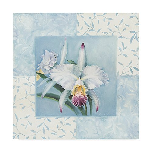 Orchid 1 by Lisa Audit, 14x14-Inch