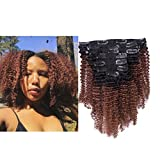 Best Clip In Hair Extensions For African American Hairs - Lacerhair Ombre Clip in Human Hair Extensions 4B Review