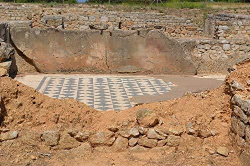 (Home Comforts Laminated Poster Roman Mosaic Antique Floor Ancient Ruins Vivid Imagery Poster Print 24 x 36)