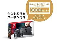 Nintendo Switch 本体 グレー + ニンテンドープリペイド番号