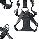 Mighty Paw Vehicle Safety Harness, Car Harness with Adjustable Straps and Soft Padding, Doubles as Dog Walking Harness with Front Leash Attachment (Large, Black)
