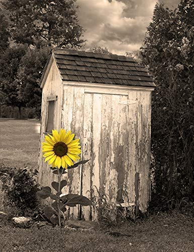 - Bathroom Farmhouse Wall Art, Sunflower Outhouse Country Theme Bath Artwork Matted Picture