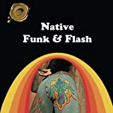 img - for Native Funk & Flash: An Emerging Folk Art book / textbook / text book