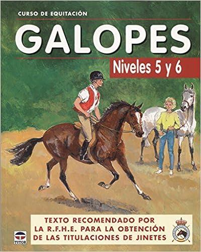 Curso De Equitación. Galopes Niveles 5 Y 6 por Los Autores De Galopes epub