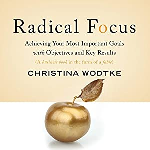 Radical Focus Audiobook