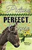 Picture, Perfect, Corpse: Book #7 in the Kiki Lowenstein Mystery Series (Volume 7)