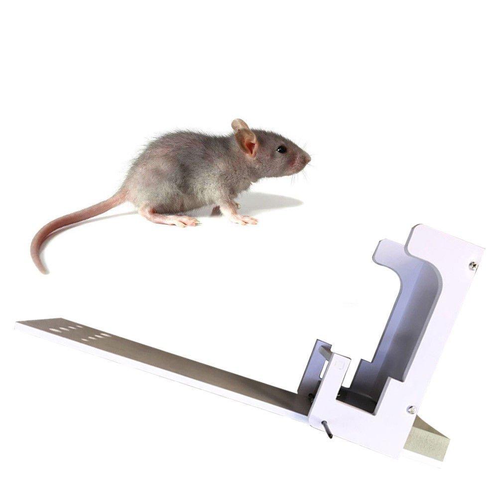 Walk Plank Mouse Trap Auto Reset Catch Rat Trap Quick Kill Alto tasso di successo LanLan