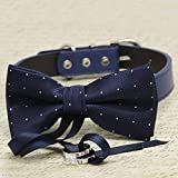 Navy Blue with Dots Dog Bow Tie Collar, Ring Bearer, Pet Wedding, Proposal