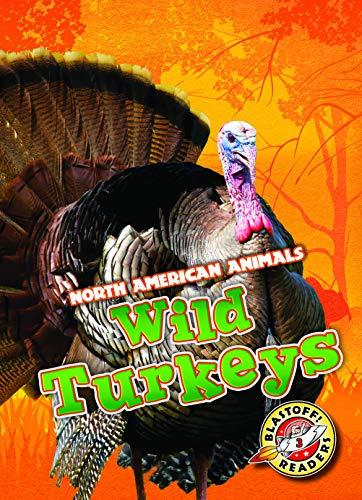Turkey American - WIld Turkeys (North American Animals: Blastoff Readers, Level 3)