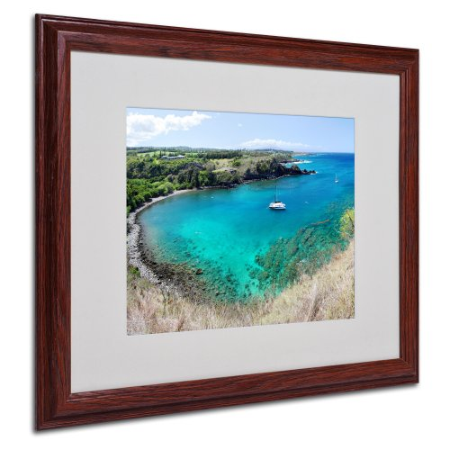 picture of Trademark Fine Art Honolua Bay by Pierre Leclerc Canvas Wall Artwork, Wood Frame, 16 by 20-Inch