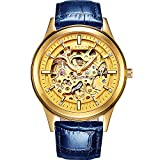 PASOY Men's Automatic Mechanical Watch Steel Sapphire Glass Luminous Hands Blue Leather Skeleton Watches