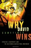 Why David Sometimes Wins, Marshall Ganz, 0195162013