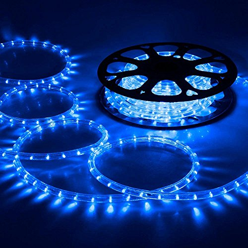 (DELight 50 FT Blue 2 Wire LED Rope Light Indoor Outdoor Home Holiday Valentines Party Disco Restaurant Cafe Decor)