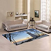 Unique Debora Custom Multicolor Rectangle Area Rug Floor Rug Carpets Home Decorate Floor with Lighthouse In Northwest Ohio The Frozen Lake Erie