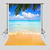 FUERMOR Background 5x7ft Blue Sky White Clouds Sea Beach Photography Backdrop Vacation Photo Props Room Mural HUIFU052