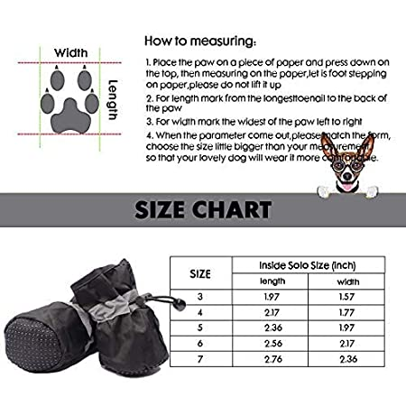 Outdoor Dog Shoes with Two Adjustable Fastening Straps and Soft Anti-Slip Sole 4 Pcs/… Indoor Dog Boots Pet Boots Dog Boots Perfect for Small Dogs ROTANET Dog Shoes
