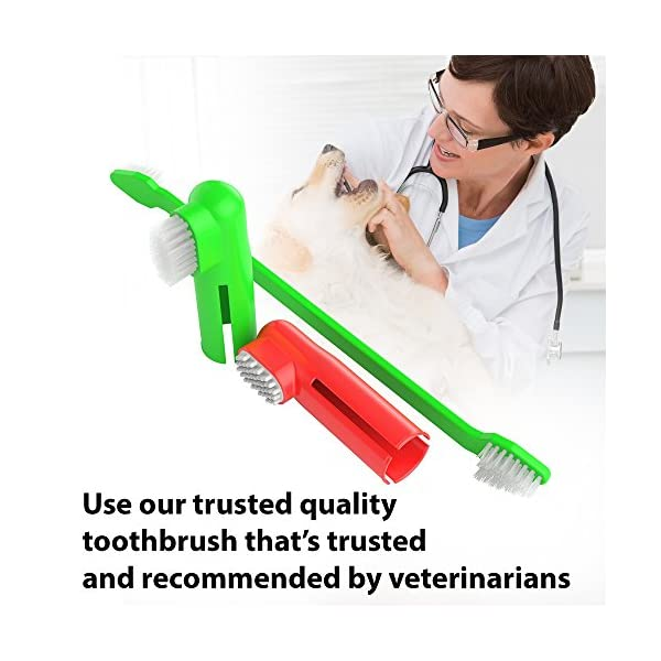 Dog Toothpaste and Toothbrush Set [REMOVES FOOD DEBRIS] Double Sided with Long Curved Handle [SUPER EASY CLEANING] - Best Soft Silicone Pet Toothbrush for Cats And Dogs [EXPANDABLE FINGER ENTRY] - Col 7