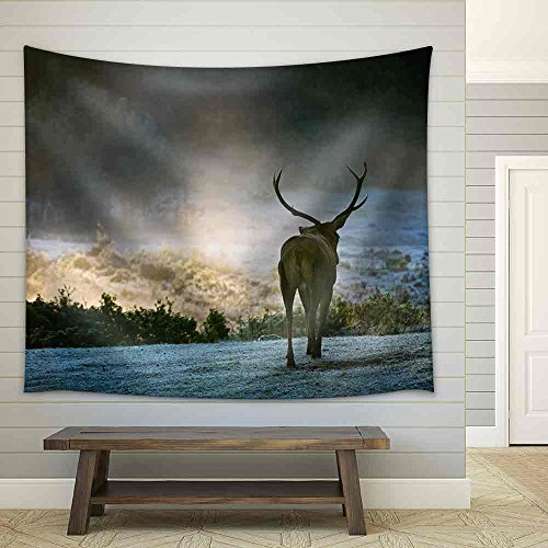 Majestic Bull Walking on the Meadow at Sunrise Fabric Wall