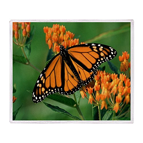 CafePress - Loving Expression Monarch But - Soft Fleece Throw Blanket, 50
