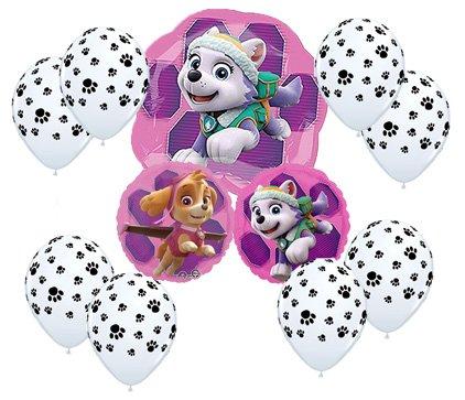 Amazon.com: Paw Patrol niña ramo de globos Skye globos de ...
