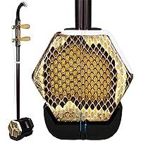 ErHu / instrumento musical Erhu / set