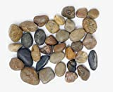 Panoramic Decorative Accents Polished River Rock, Select Color and Size (30-55mm, 4.4 Pounds Multicolor)