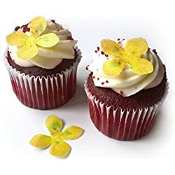 "24 Yellow Flower Flat Edible Wafer Paper Flowers Very Small 1.25"" Flower Cake Cupcake Toppers Decoration"
