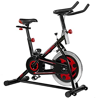 Merax Pro Fitness indoor Cycling Trainer Exercise Bike -30 lbs Flywheel