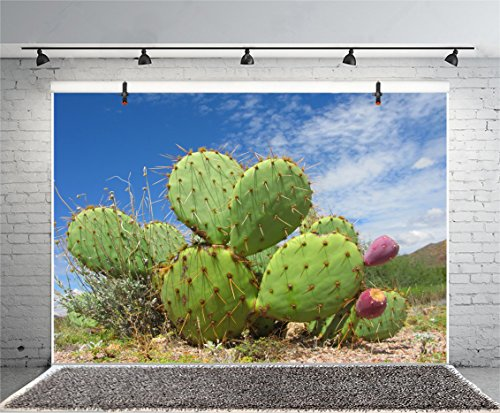 Leyiyi 6x4ft Photography Background Mexico Cactus Filed Backdrop Western Life Desert Plant Saguaro Fruit Dry Sand Grunge Blue Sky Cloud Cowboy American Travel Photo Portrait Vinyl Studio Video Prop