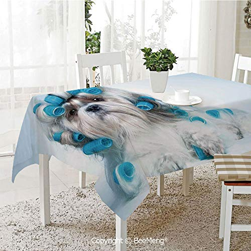 BeeMeng Large dustproof Waterproof Tablecloth,Family Table Decoration,Dog Lover Decor,Shih tzu Dog with Surlers Grooming Hairstyle Salon Front View Closeup Studio Shot,70 x 104 inches