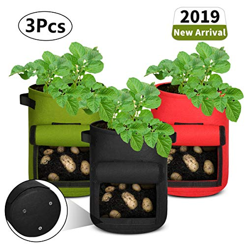 Aebitsry 3 Pack 7 Gallon Potato Grow Bags, Breathable Non-Woven Cloth, Tomato Flower Vegetable Growing Bags Plant Container Aeration Fabric Pots with Flap Velcro Window Handles Black Green Red