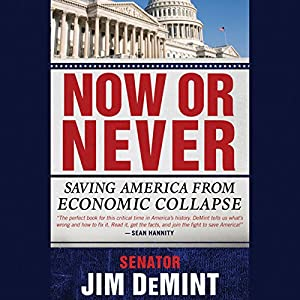Now or Never: Saving America from Economic Collapse Audiobook