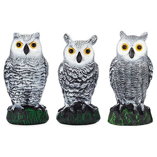 Horned Owl (Bird Blinder Scarecrow Fake Owl Decoys - Pest Repellent Garden Protectors – (small) (set of 3))