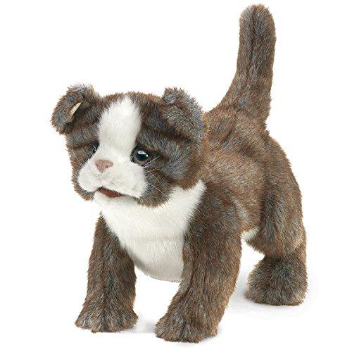 Folkmanis Scottish Fold Kitten Hand Puppet (Hand Folkmanis Puppet Cat)