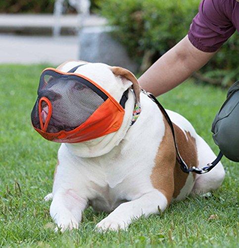 JWPC Short Snout Dog Muzzle Adjustable Bulldog Muzzle Breathable Mesh Biting Chewing Barking Training Dog mask For Small Medium Large Dogs,Orange S