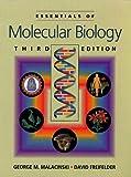 Essentials of Molecular Biology 9780867208603