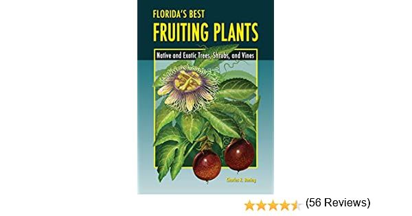 Floridas Best Fruiting Plants Shrubs and Vines Native and Exotic Trees