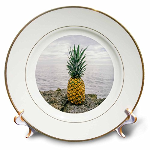 3D Rose Tropical Pineapple Set in a Circle Porcelain Plat...