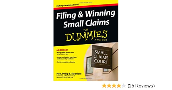 filing and winning small claims for dummies straniere philip