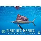 Tiere des Meeres: Faszination Tauchen (Wandkalender 2017 DIN A4 quer): Haie, Wale, Delfine: Tauchen Sie ab in die blaue Tiefe (Monatskalender, 14 Seiten ) (CALVENDO Tiere)